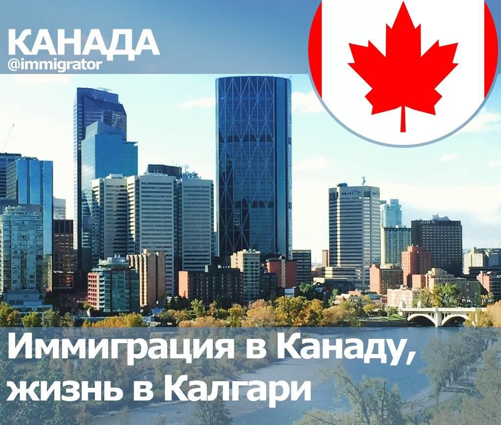 Жизнь в канаде: плюсы, минусы и особенности | плюсы и минусы