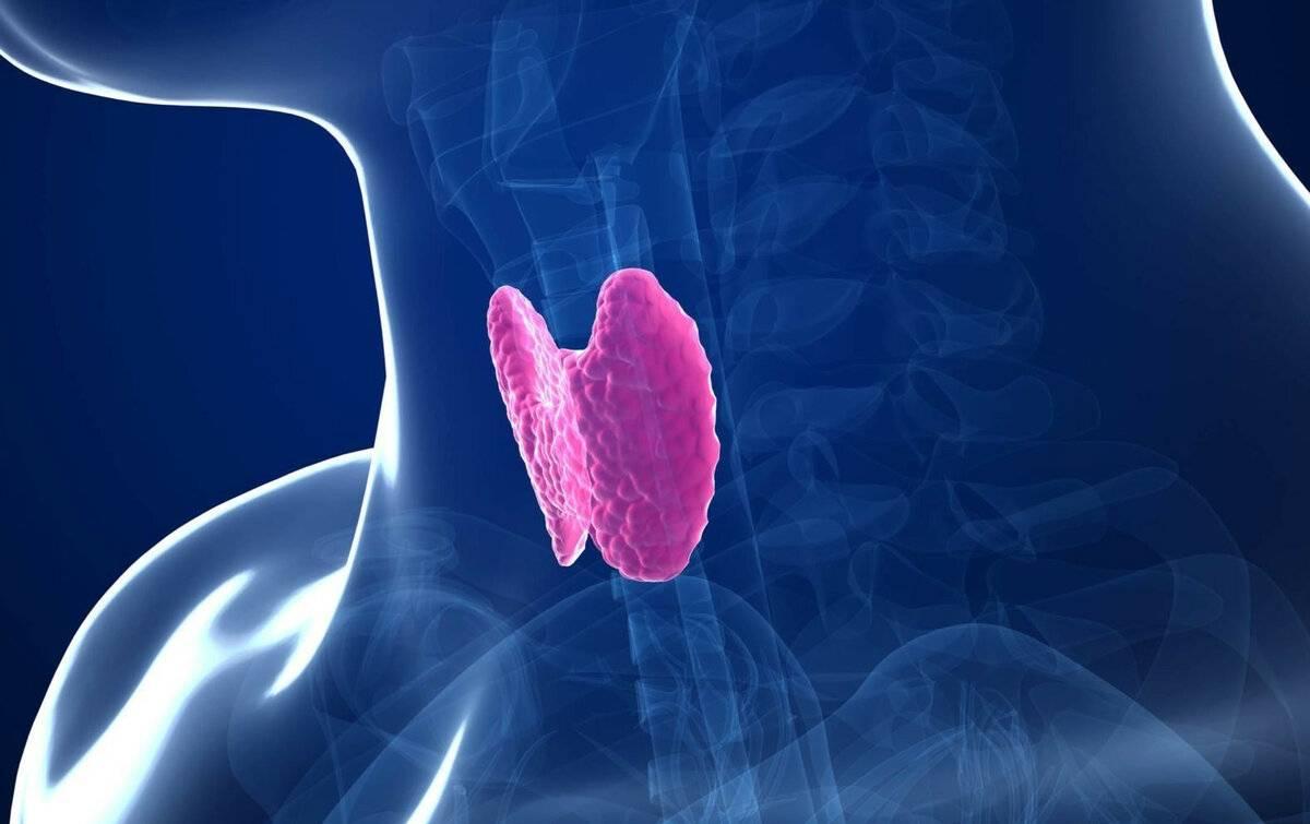 Победа над раком щитовидной железы в германии