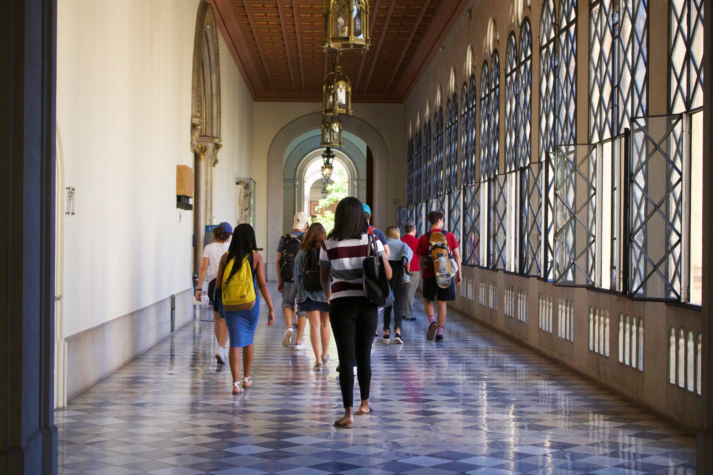 Высшее образование в сфере культуры и искусств в испании. испания по-русски - все о жизни в испании