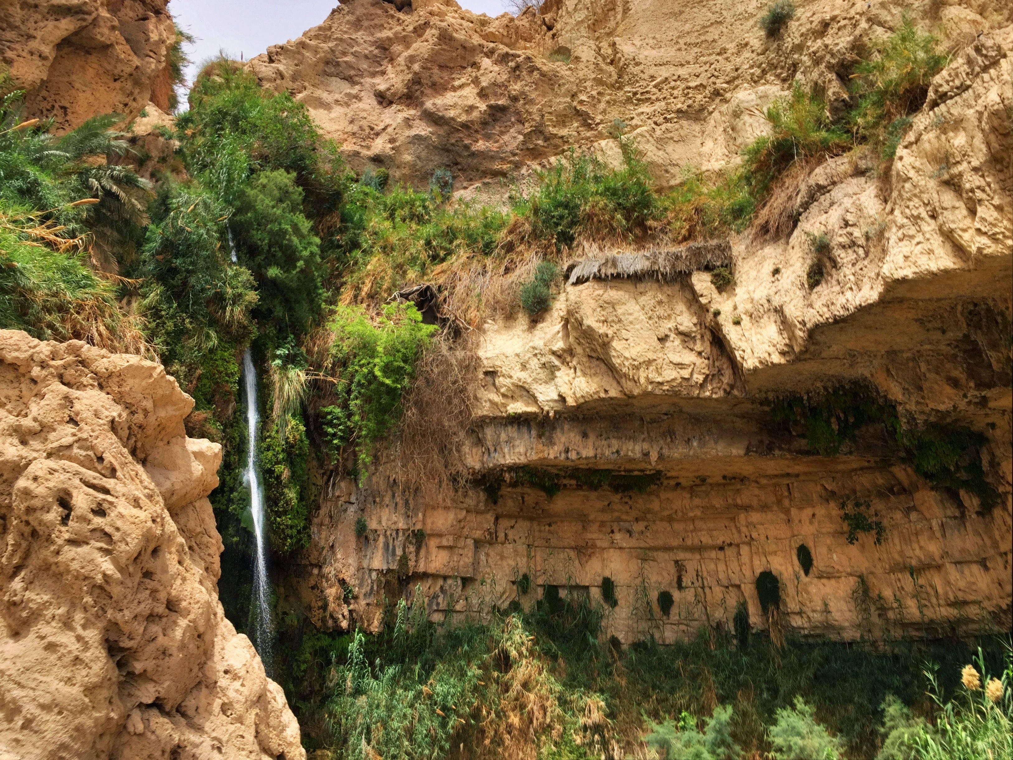 Национальные парки и заповедники израиля - лучший, карта, матмон