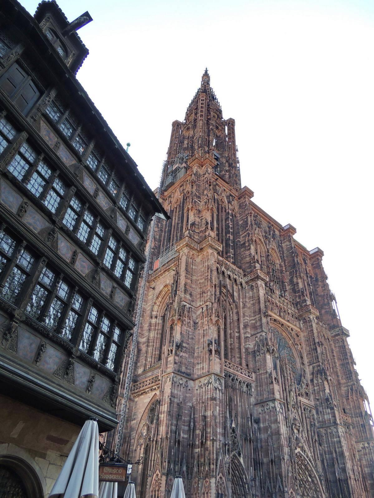 Ульмские воробьи и самый высокий собор в мире