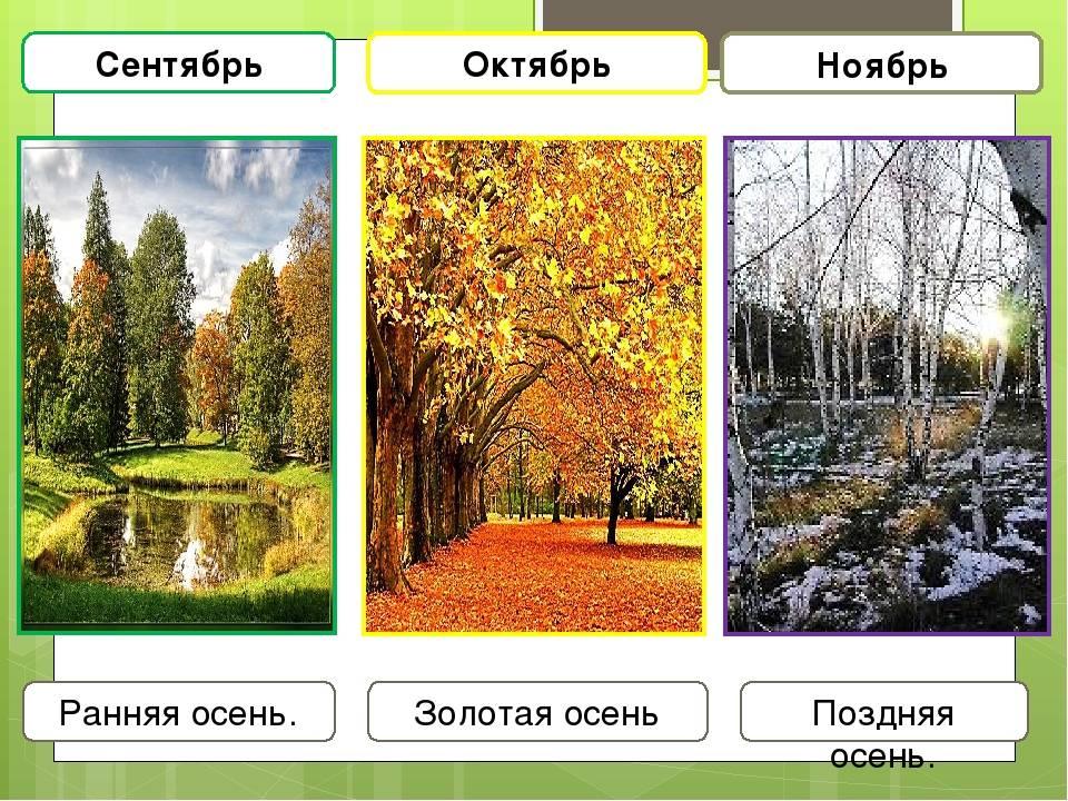 Особенности погоды в варшаве в разные месяцы года
