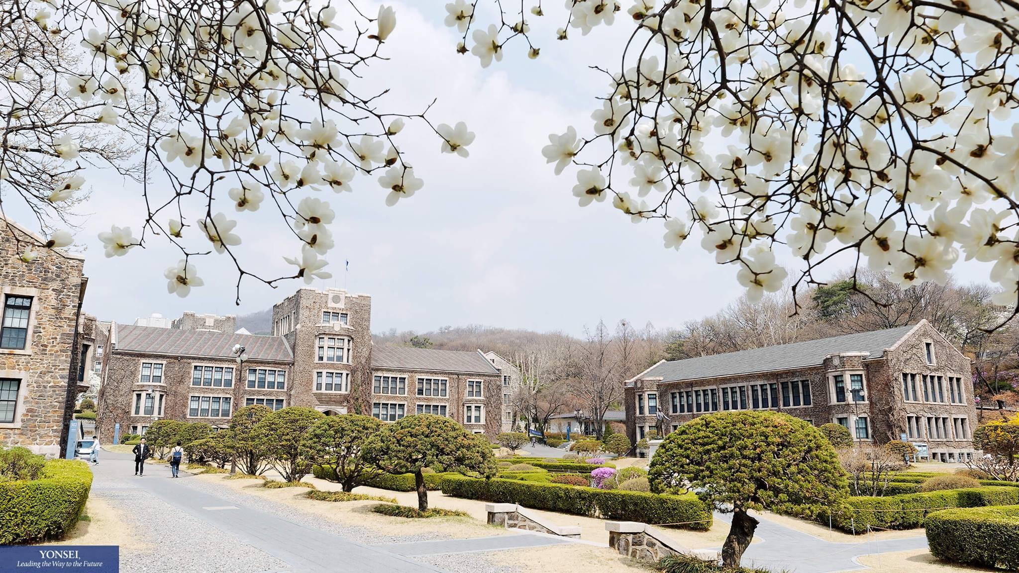 Пукёнг университет (pukyong national university)
