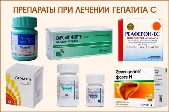 Гепатит в – пути передачи, риски заражения