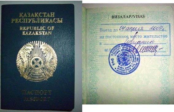 Программа переезда в германию как поздний переселенец: условия, подготовка документов, получение визы, законы и параграфы
