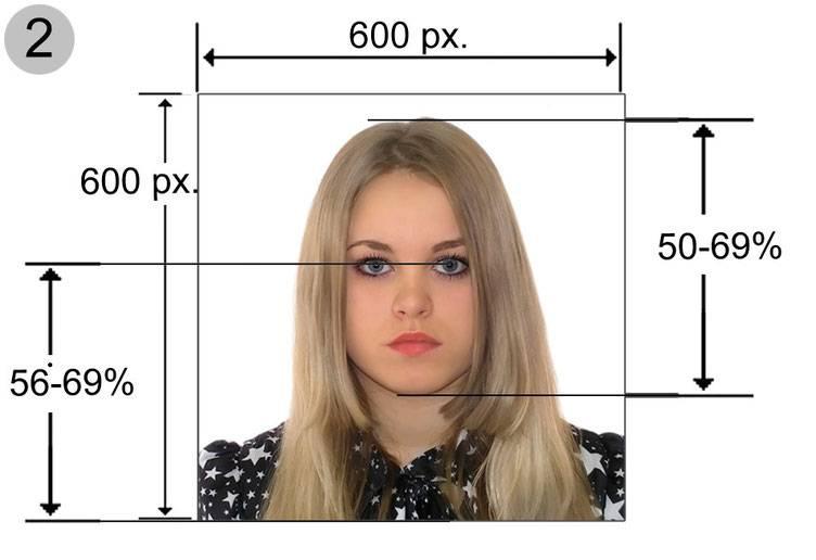 Как сделать фото для анкеты на грин кард в 2021 году