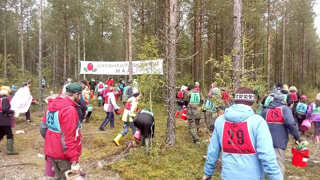 Работа в финляндии для украинцев: от визы до жилья