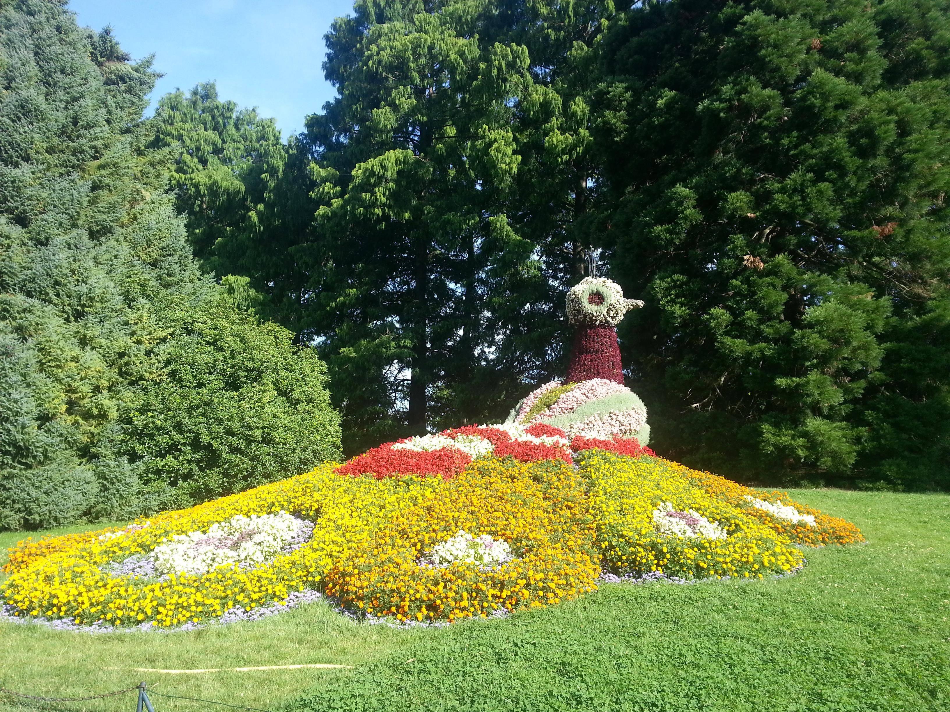 Остров майнау (mainau): цветочный оазис в германии - дачник