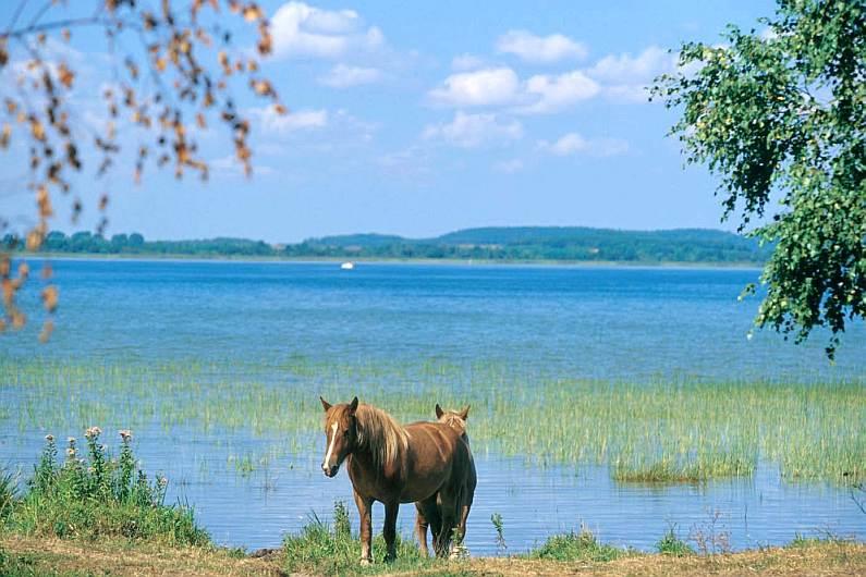 Что представляет собой отдых на мазурских озерах в польше стоит ли туда ехать?