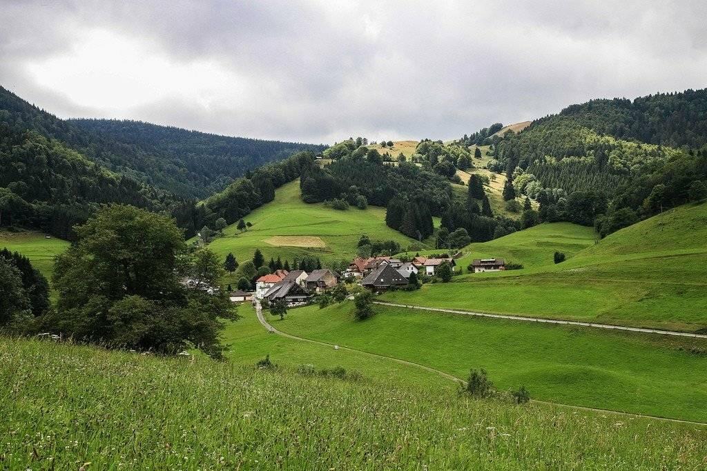 Шварцвальд или «черный лес» германия | чудеса природы