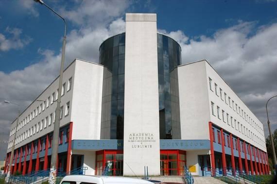 Учеба в люблянском университете. личный опыт милены ткаченко