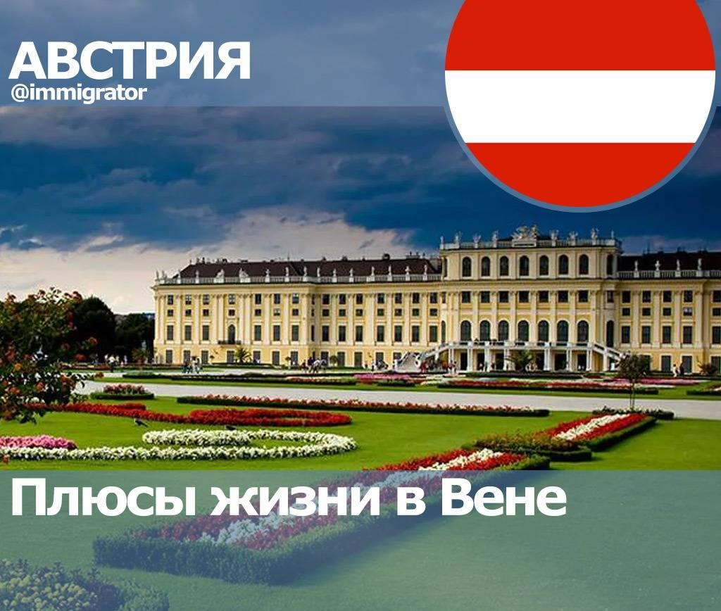 Работа в австрии вакансии и резюме