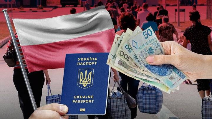 Средняя зарплата в польше для украинцев по профессиям и видам работ