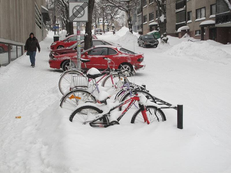 """""""если на велодорожке больше двух см снега, это штраф"""". эксперт — о велосипедах в минске и финляндии"""
