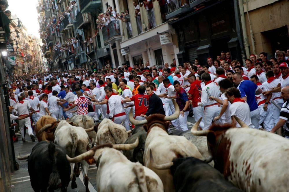 Как проводится бег с быками в испании