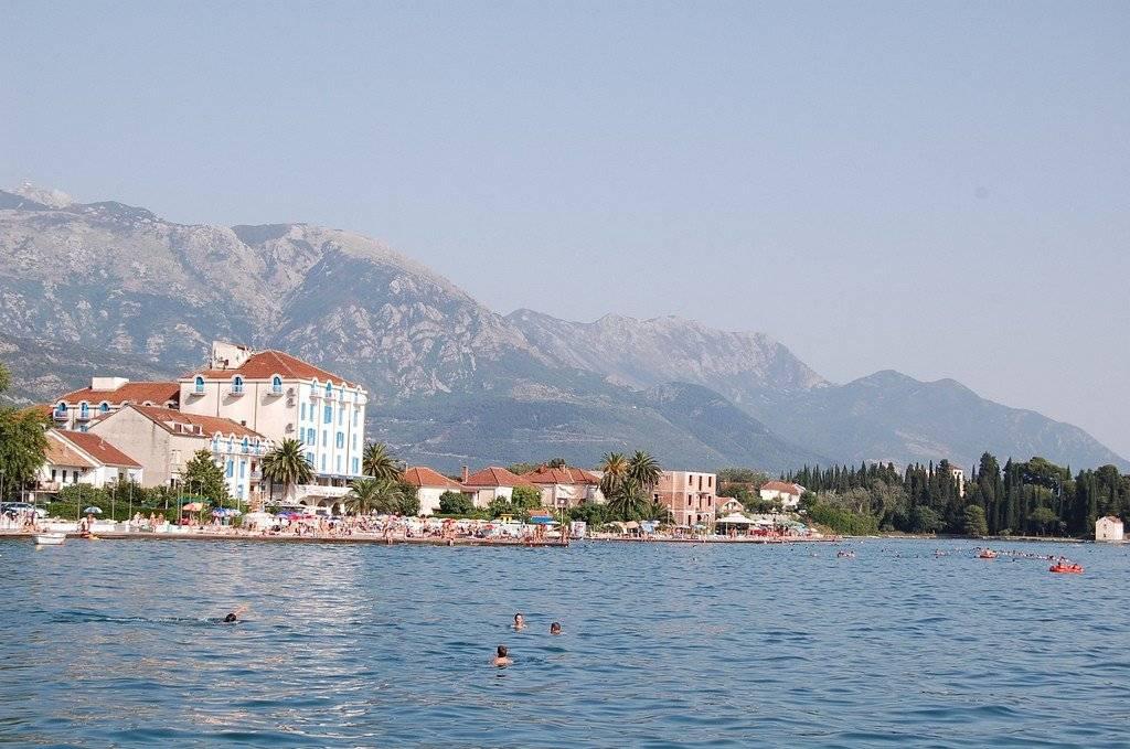 Как зарегестрировать фирму в черногории в 2021 году