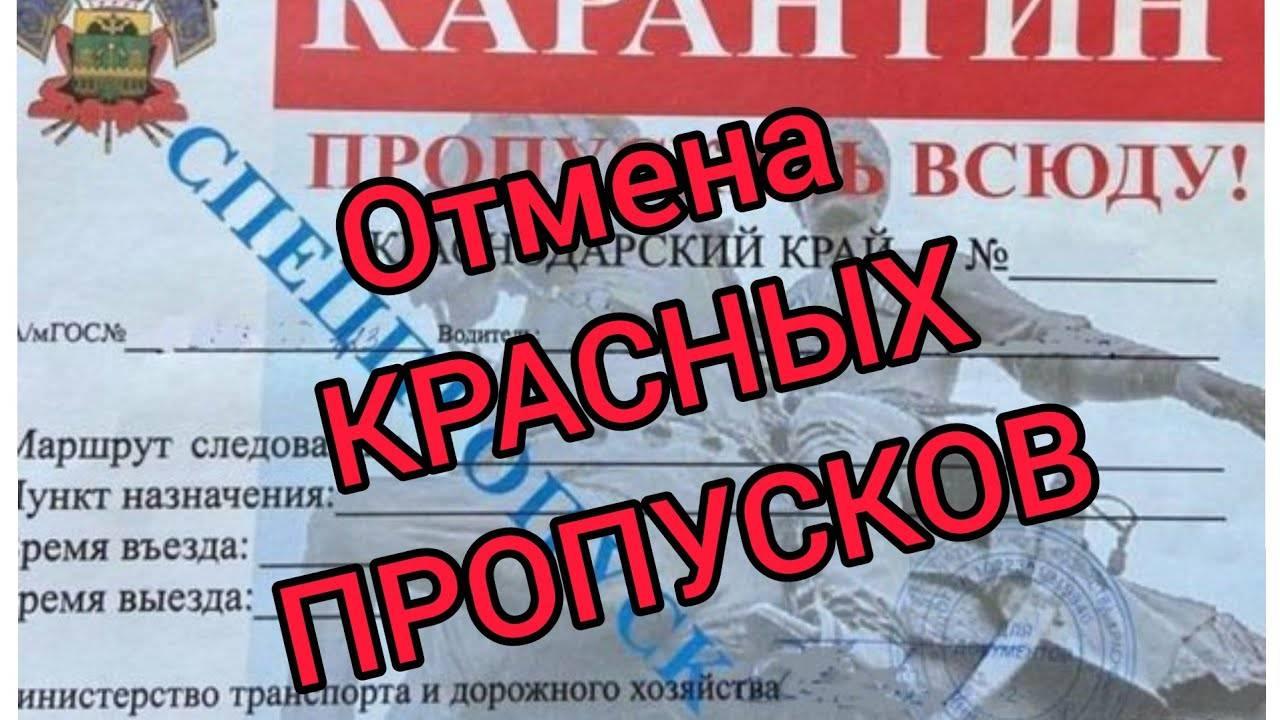Как живут русские в черногории в 2021 году