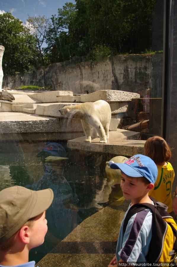 Досуг с детьми в Германии: описание, стоимость билетов, режим работы лучших зоопарков страны