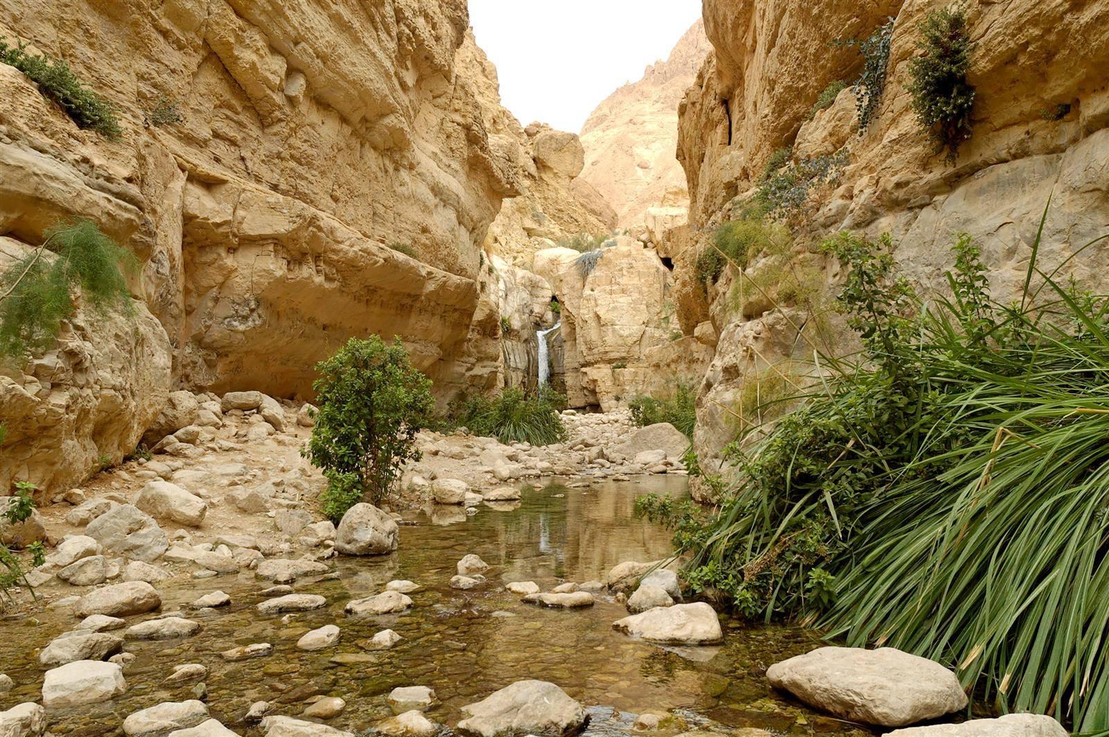 Израиль национальные парки и заповедники - лучшие, карта, матмон