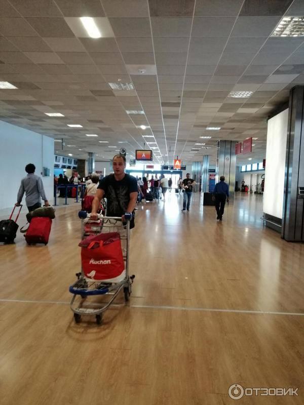 Аэропорты италииохота на солнце