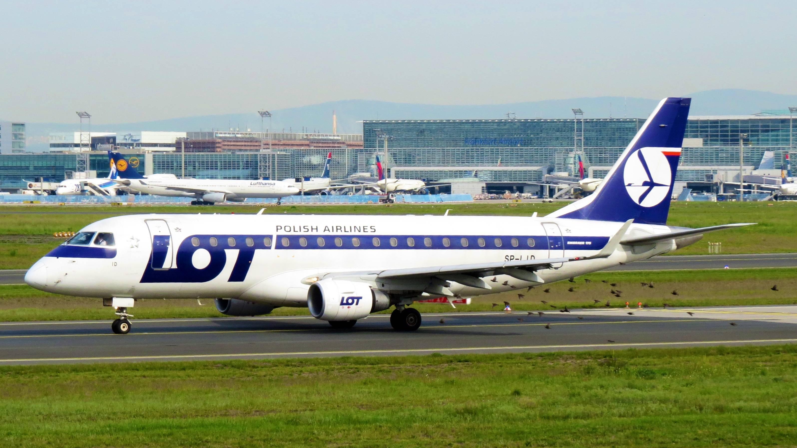 Lot polish airlines (лот полиш эйрлайнс): описание авиакомпании, услуги и цены, правила провоза багажа и ручной клади на польских авиалиниях
