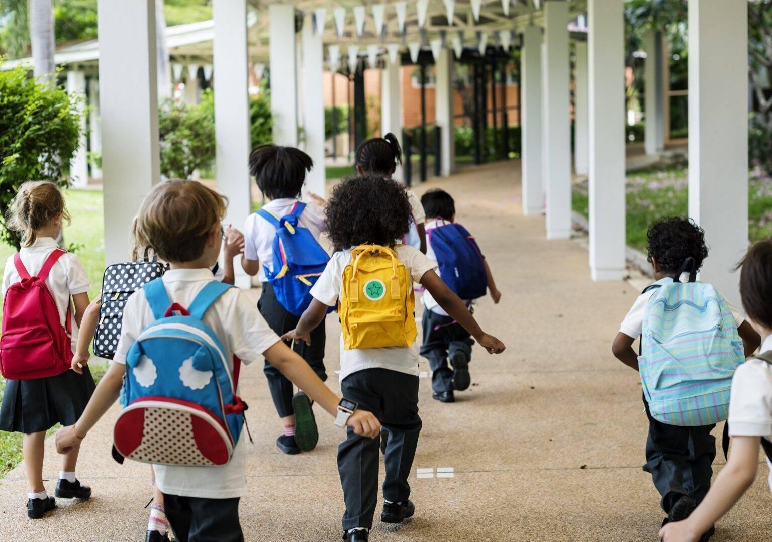 3 вида образования в японии: дошкольное, школьное, высшее