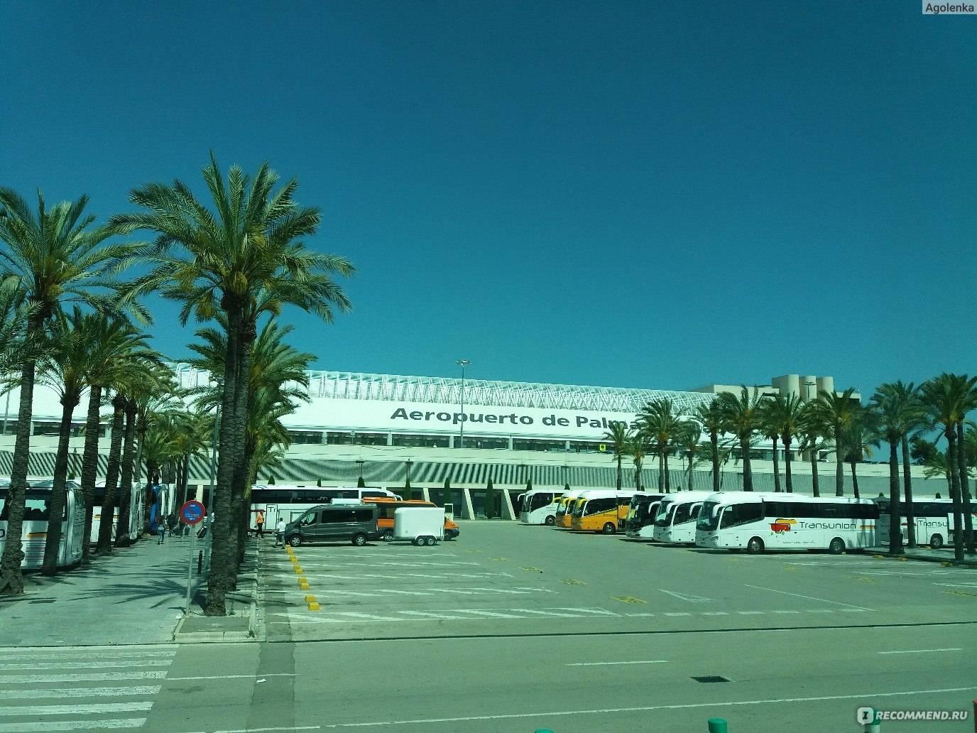 Споттинг в аэропорту пальма-де-мальорка (pmi)