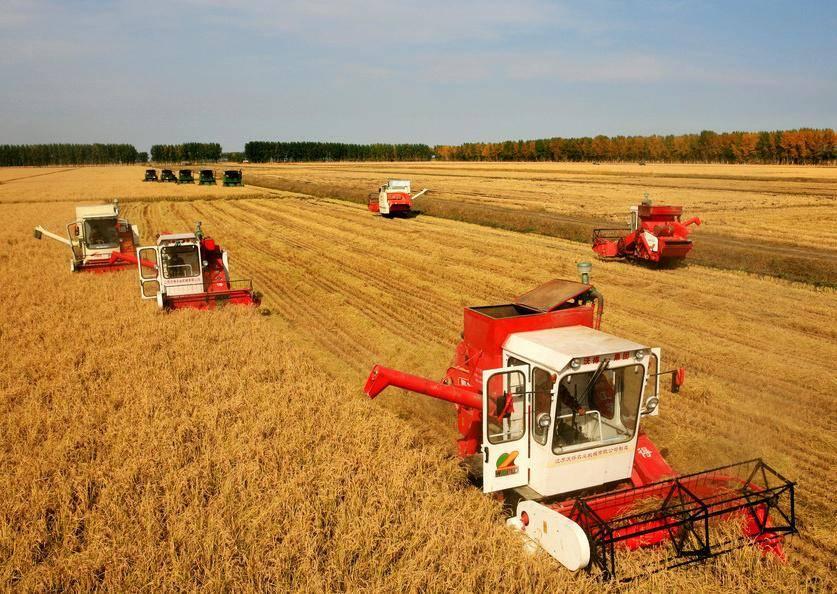 Работа в сельском хозяйстве за границей