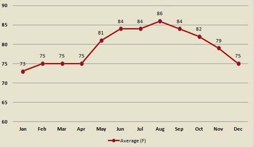 Погода в майами по месяцам температура воды