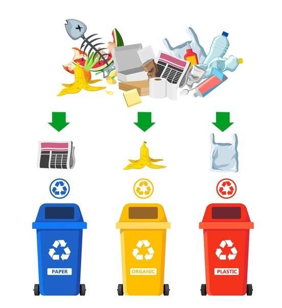 С 2021 года москва переходит на раздельный сбор мусора как правильно сортировать отходы и не забросить это дело через неделю?