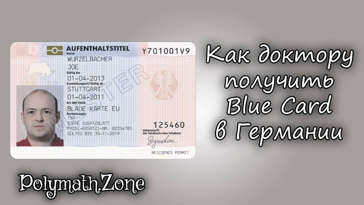 Голубая карта ес (niebieska karta ue): как получить в польше и сколько она стоит