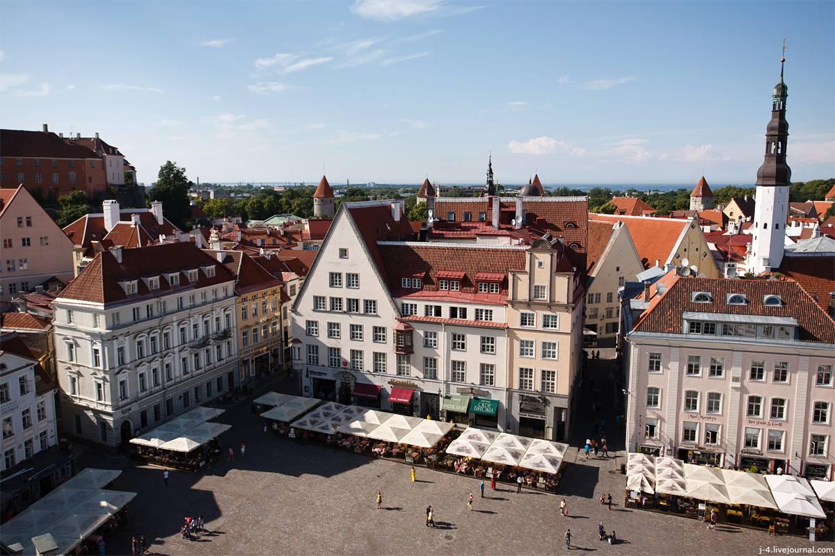 Работа в эстонии в 2021 году: вакансии, сайты поиска, разрешение