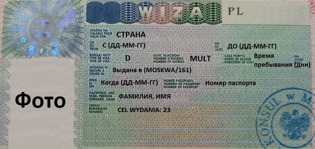 Как получить польскую бизнес-визу за один месяц