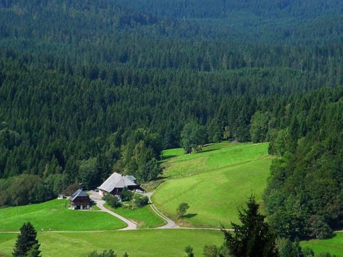 Шварцвальд германия — помощник путешественника