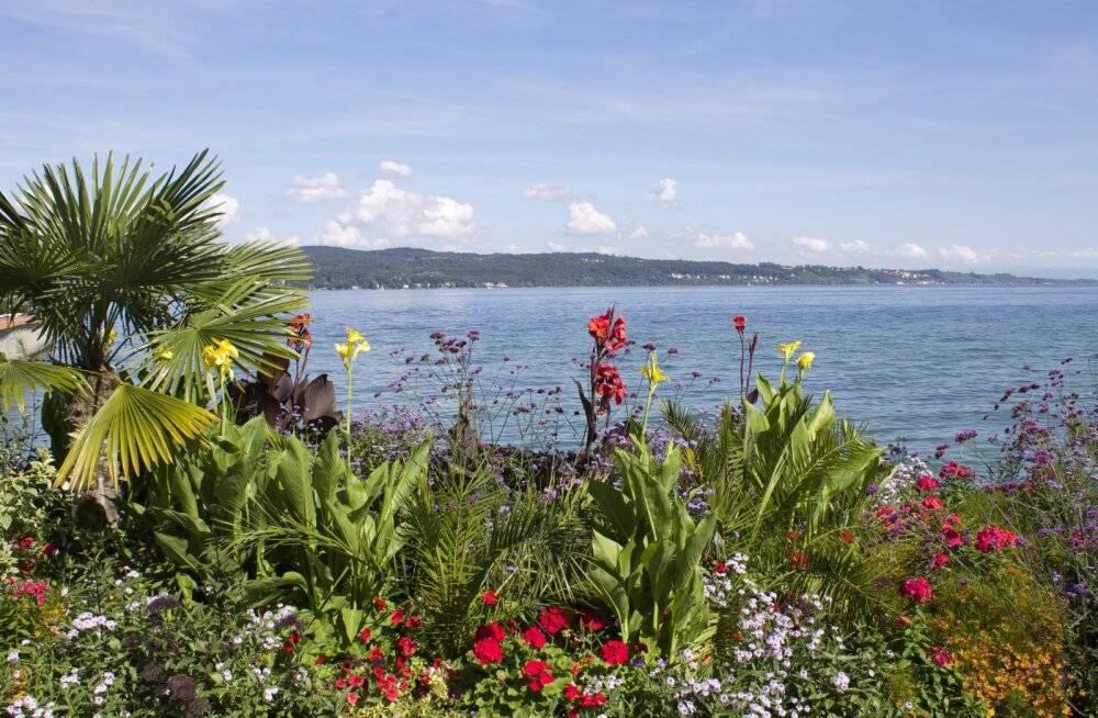 Самый цветочный остров германии