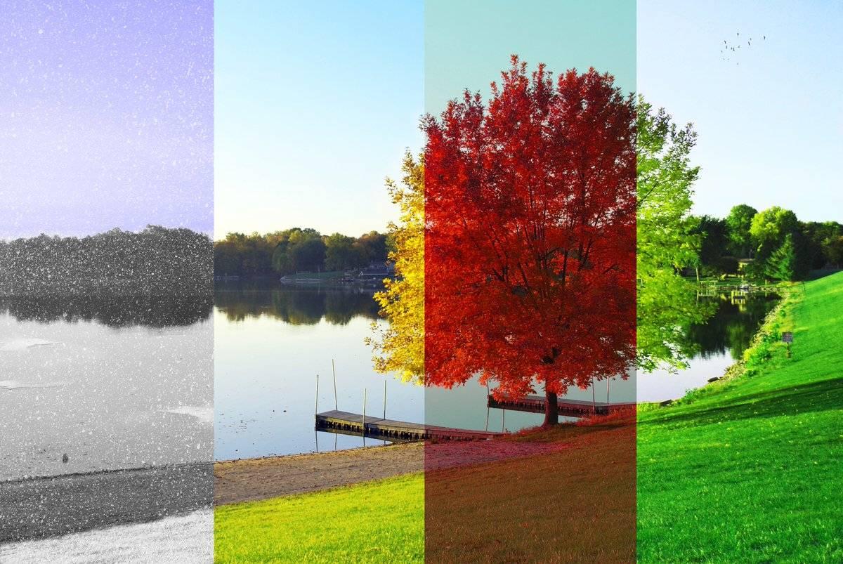 4 времени года в берлине: весна, лето, осень, зима