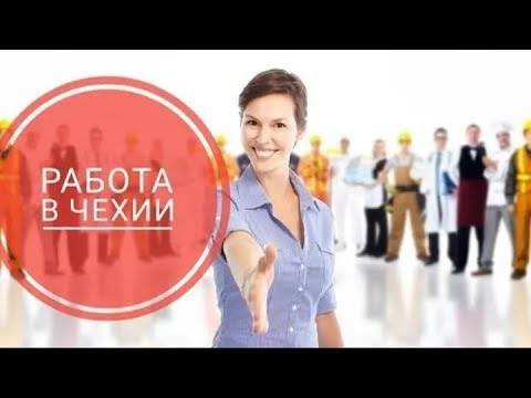 Самые востребованные профессии в чехии