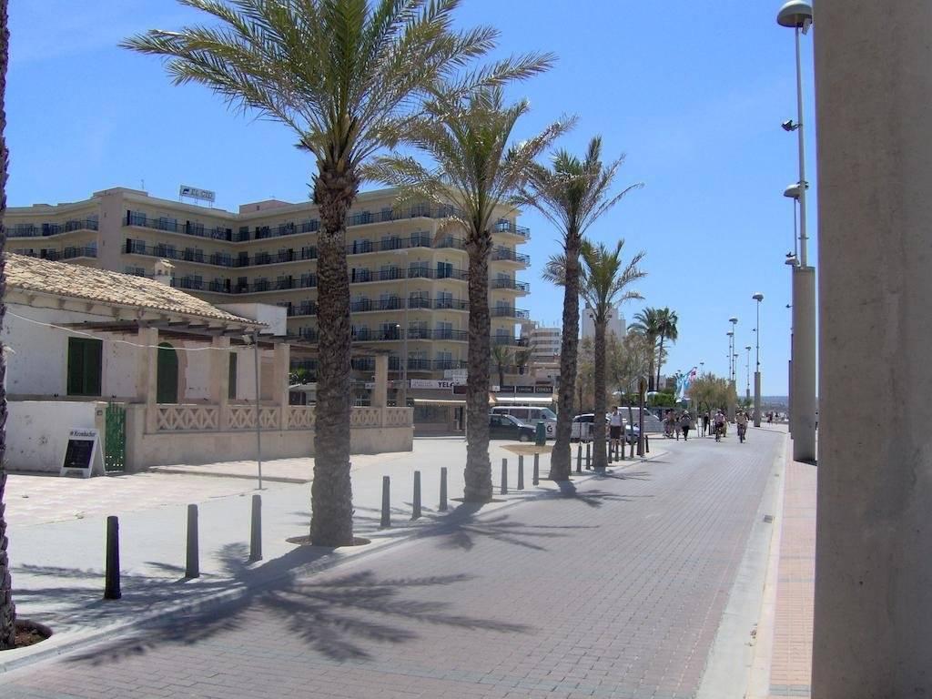 Погода в плайя де пальма в феврале 2022