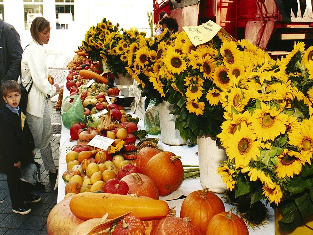 Праздник урожая — википедия. что такое праздник урожая