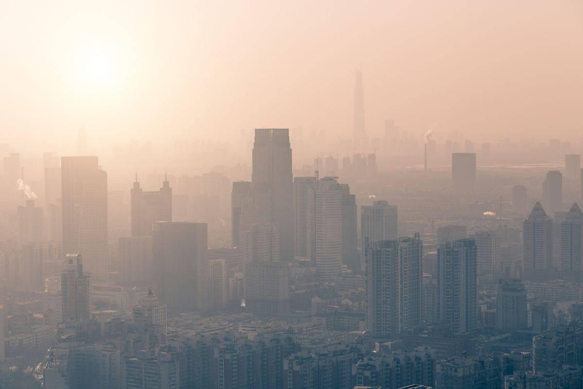 Влияние смога на окружающую среду и загрязнение атмосферы: экологические последствия и пути решения проблемы
