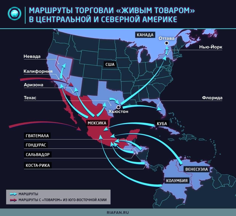 Нелегальные иммигранты из мексики - большая проблема для сша? часть 1   законы и безопасность   школажизни.ру