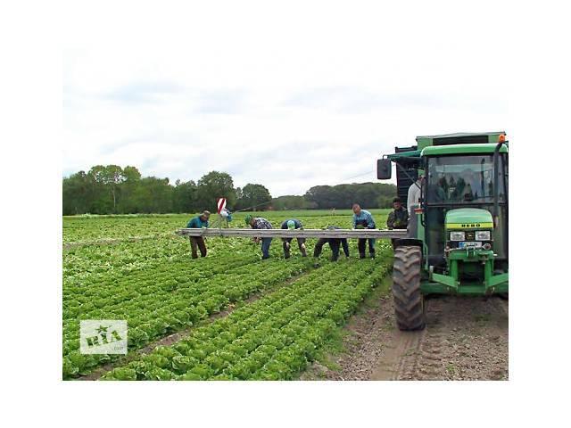 Работа в сельском хозяйстве за границей |  eurabota.ua