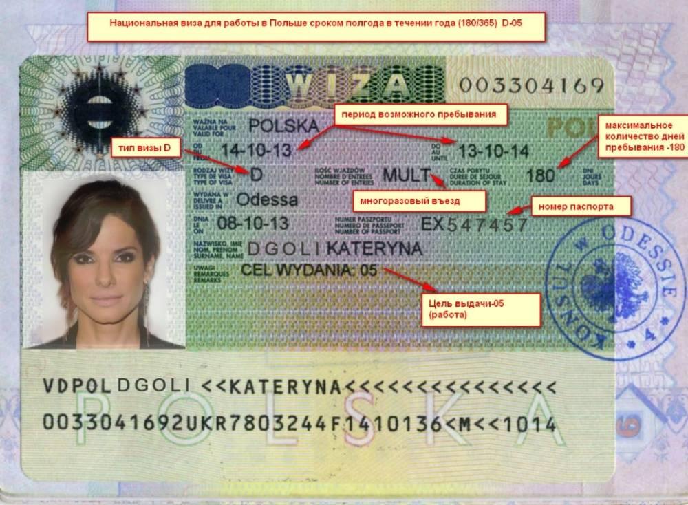 Виза в польшу 2021 — документы, анкета, сколько стоит | polsha.by