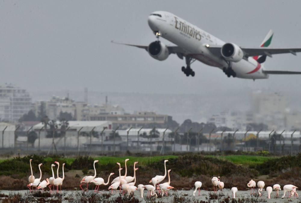 Кипр хочет возобновить авиасообщения