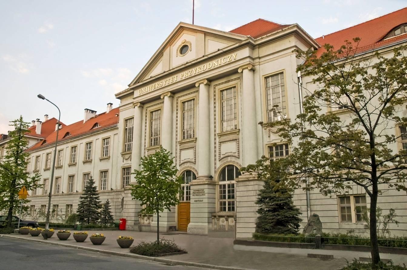 Как поступить во вроцлавский университет (uniwersytet wrocławski)