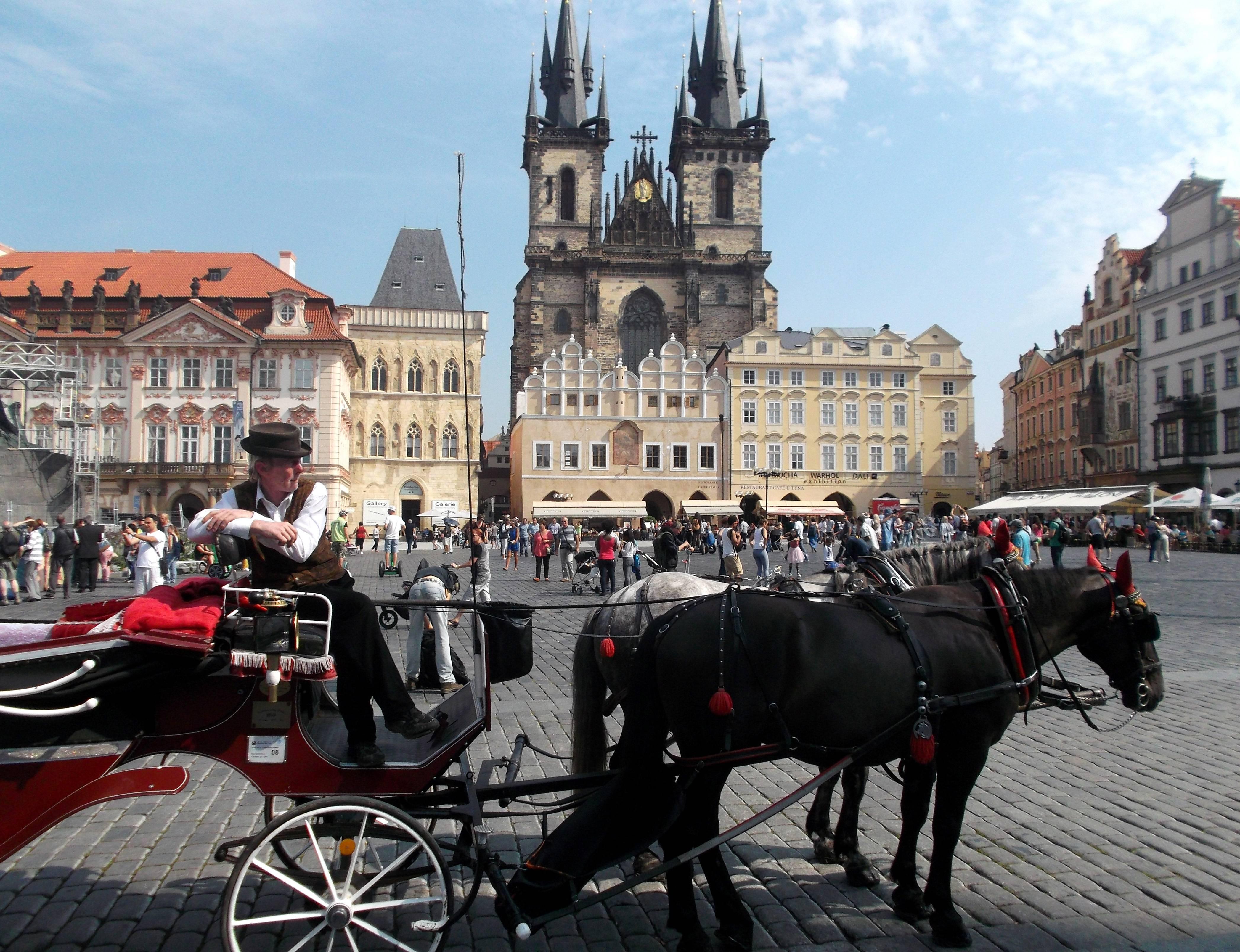 Что посмотреть в окрестностях праги: замки, города, достопримечательности — туристер.ру