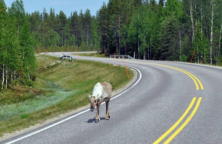 Едим в финляндию на своей машине!