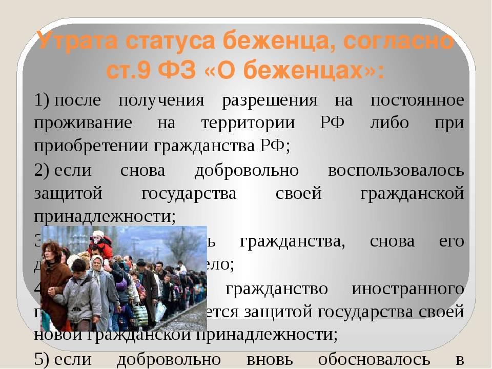Убежище для украинцев   иммиграция в сша   адвокат