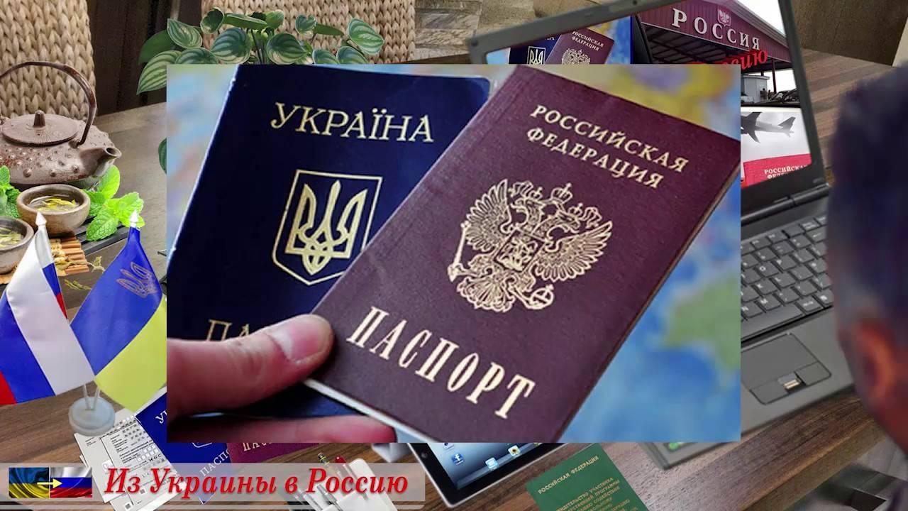 Жизнь эмигрантов в израиле: отзывы русских об уровне зарплат и образования, плюсы и минусы переезда — вне берега