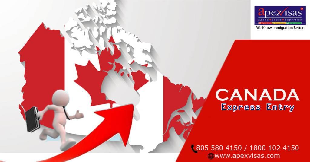 Express entry canada 2020: калькулятор и проходные баллы экспресс энтри для иммиграции в канаду